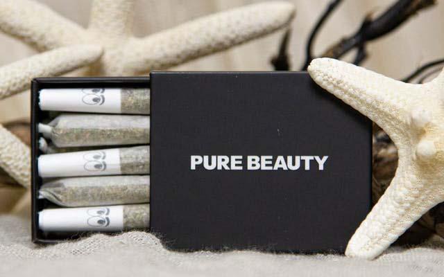 Pure Beauty Mini PreRolls